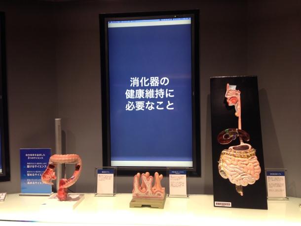 "Beauty paradise ""FANCL GINZA SQUARE"" renewal open!"
