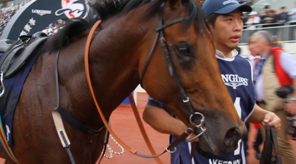 LONGINES Hong Kong international races 2013