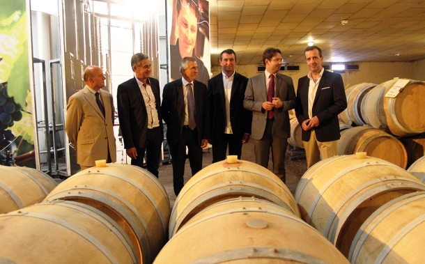 Buzet Oniric vendange 2014 oct3
