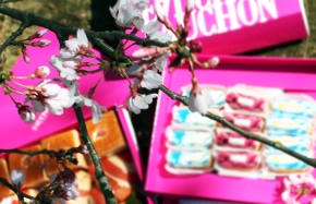 Elegant Hanami party by My Little Box × FAUCHON