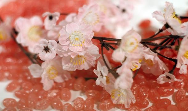 jelly belly sakura1
