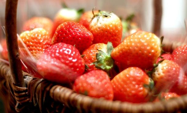strawberry art buffet hilton tokyo14