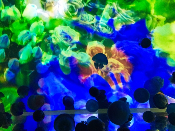 Mika Ninagawa x SUMIDA Aquarium Jellyfish kaleidoscope tunnel1