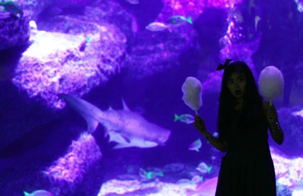 Mika Ninagawa x SUMIDA Aquarium Jellyfish kaleidoscope tunnel13